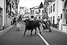 We don't kill the bull