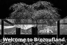 Brozoufland